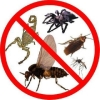 product - We do fumigation and pest control on 0781514499